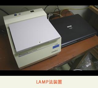 LAMP法装置