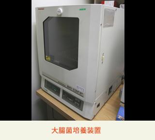 大腸菌培養装置